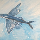 Flying Fish Artists Open Day
