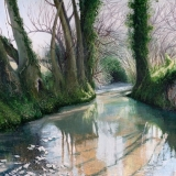 Mike Woollacott Stream