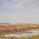 Celia Olsson - Salt Marsh
