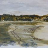 Taw Estuary - oil