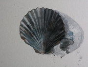 Jennifer Schamotta - Shell