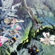 Johnny Hurford - Plantation wood,