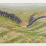 Marianne Edwards Pinkery Path