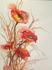 Phil Rycroft - Poppies