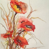 Phil Rycroft - Poppies