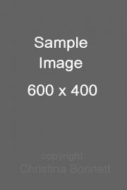 sample image 3